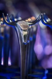 Nagroda GPW dla INC